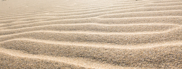 waves of sand in the desert on the sand dunes