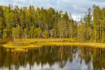 Finland forest and lake at Pieni Karhunkierros trail. Autumn