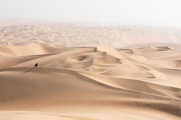 Młoda piękna Kaukaska kobieta pozuje w tradycyjnej sukni Emirati - abaya w pustynnym krajobrazie Pustej ćwiartki. Abu Zabi, ZEA.