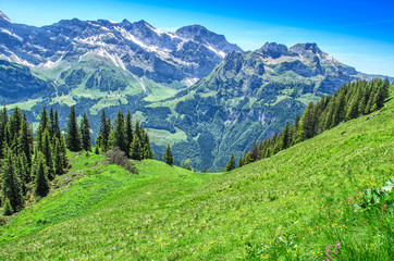 Swiss alps in the summer season. Panorama of the picturesque mountain, alpine landscape. Resort Engelberg, Switzerland