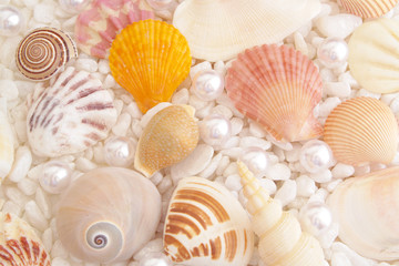 White pearls and seashells on stones background