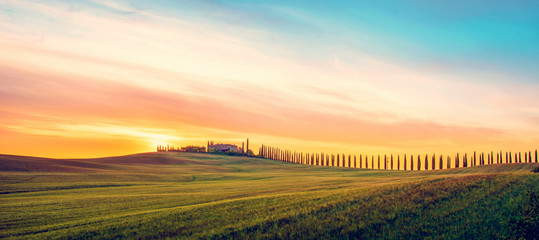 Beautiful magical landscape with a field and a line of cypress in Tuscany, Italy at sunrise
