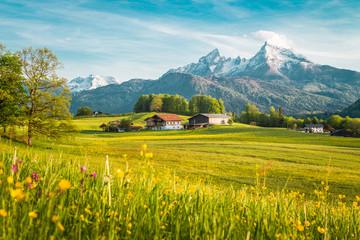 Idylliczny krajobraz w Alpach z kwitnącymi łąkami na wiosnę