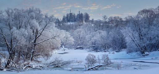 Russian winter in Borovsk