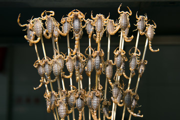 Grill and fried scorpions on stick from Wangfujing street at Beijing, China