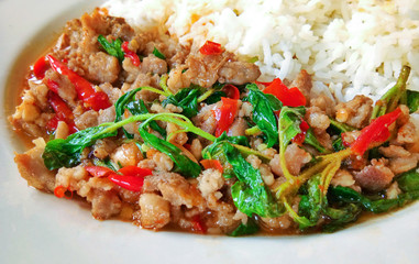 Popular food in thailand, Rice topped with stir-fried pork and basil