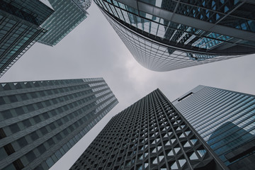Modern skyscrapers - corporate building