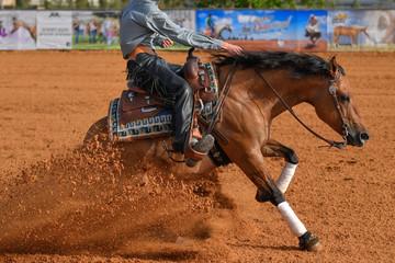 Widok z boku jeźdźca w dżinsach, kowbojskich czapkach i kraciastej koszuli na lejącym się koniu zatrzymuje się na arenie w czerwonej glinie.