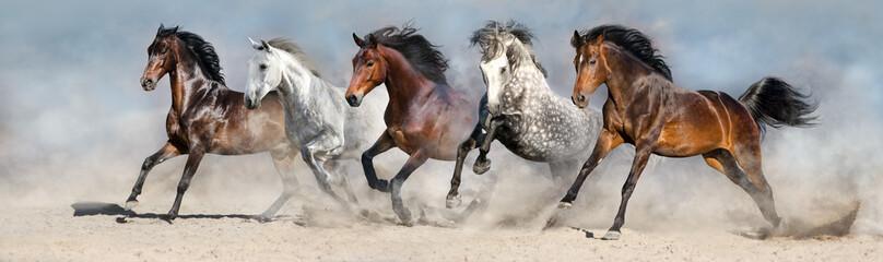 Konie biegają szybko po piasku na tle dramatycznego nieba