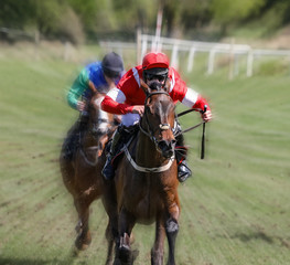 Lead race horse and jockey galloping at speed towards the finish line