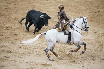 Corrida. Matador i koń walczą w typowej hiszpańskiej walce byków