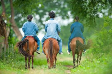 Animal Science studying on horseback. Thai Horse. Horse whisperer. Garden background. Animal Husbandry at Kasetsart University, Kamphaeng Saen Campus (KU.KPS), Thailand.