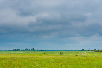 photo of a spring field in a rainy season, dark clouds in the sky