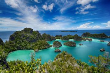 Wyspy Pianemo na archipelagu Raja Ampat (Indonezja)
