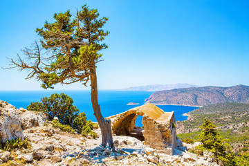 Historic ruin and pine tree, Mediterranea Sea, Rhodes Island, Greece