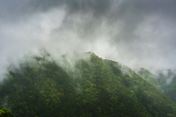 Beautiful mountain covering with fog in Wakayama Prefecture , Japan