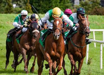Race hoses and jockeys galloping at speed