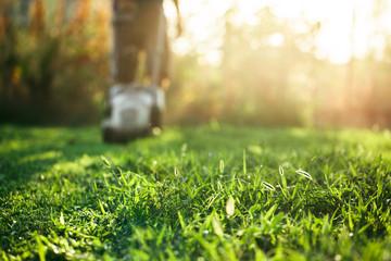 Lawn mower cutting green grass in backyard.Gardening background
