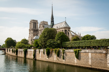 Notre Dame de Paris in the summer