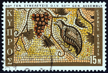 Grapes and Partridge mosaic, Paphos (Cyprus 1970)