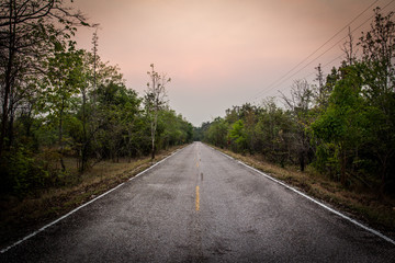 Landscape of empty road along the forest.