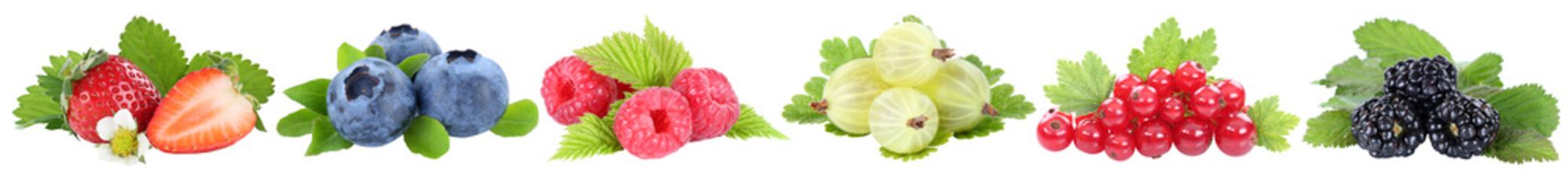 Sammlung Beeren Erdbeeren Blaubeeren Himbeeren rote Johannisbeeren Früchte in einer Reihe isoliert Freisteller freigestellt