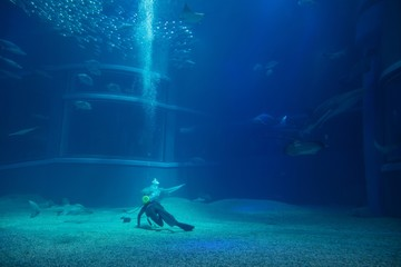 Clean the aquarium of the diver at aquarium