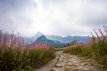 Way in the Tatra mountains
