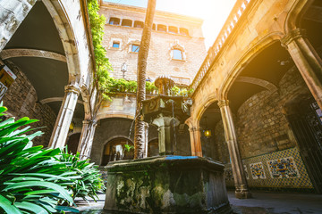Spain, Barcelona, courtyard and fountain of Casa de l'Ardiaca Archdeacon's House at night in Gothic Quarter Barri Gotic