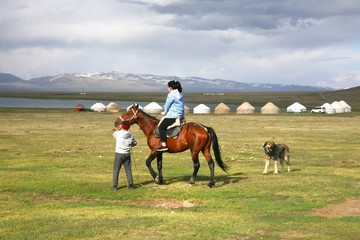 The horse  around ger camp in a large meadow at Song kul lake ,  Naryn of Kyrgyzstan