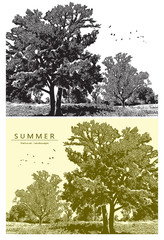 Summer landscape with trees, field and birds flying in the sky. Vector graphic illustration of summer nature in black and white and beige color, vintage style.