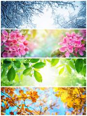 Cztery pory roku. Zdjęcia przedstawiające cztery różne zdjęcia przedstawiające cztery pory roku: zimę, wiosnę, lato i jesień.