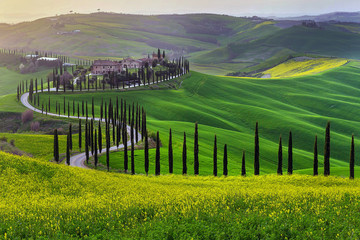 Zielone wzgórza Toskanii