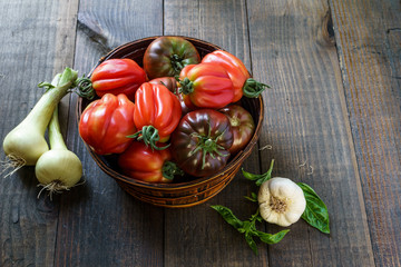 Fresh Organic Tomatoes in a basket and basil with garlik on a wooden table.