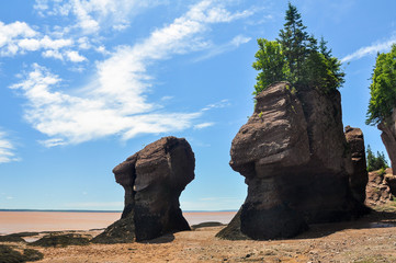 Hopewell Rocks at low tide, Fundy bay, Canada