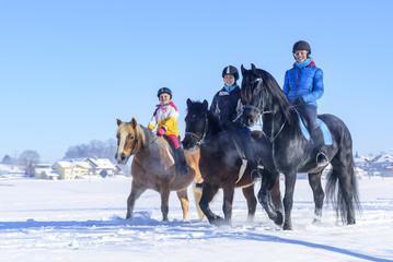 gutgelaunt mit den Pferden im Schnee unterwegs