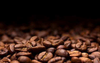Roasted coffee beans on dark background
