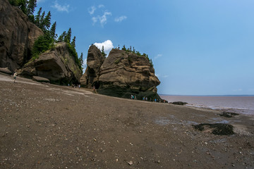 Low tide at Hope Well Rocks New Brunswick Canada (aka Flowerpot Rocks)