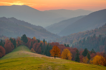 Colorful autumn evening after sunset in the Carpathian mountains