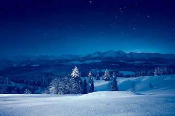 Starry winter night