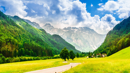 View on green mountains and meadow in Logarska dolina valley