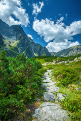 Trail to black lake under Rysy peak, Tatra Mountains, Poland
