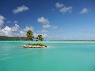 Palm tree island in turquoise lagoon