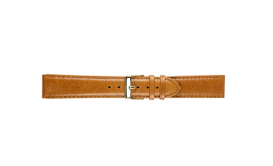 The watchstrap isolated