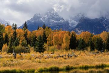 Grand Teton National Park Autumn Landscape