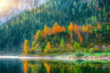 Beautiful view of idyllic colorful autumn scenery in Gosausee lake Austria