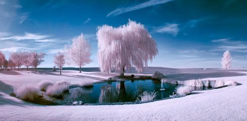 Scena w podczerwieni stawu i drzew
