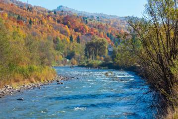 Autumn Carpathian mountain river (Ukraine).
