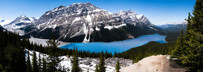 Panoramic view of Peyto lake on icefield parkway