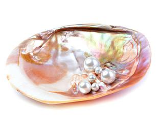 Naturalne perły wewnątrz muszli ostryg